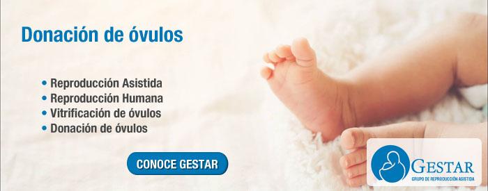 vender ovulos en argentina, donacion de ovulos procedimiento, donacion de ovulos riesgos, donar ovulos es peligroso