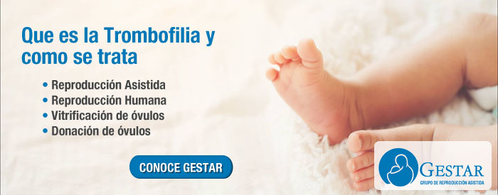 trombofilias pdf, trombofilia genetica, Que es la trombofilia y como se trata, trombofilia hereditaria sintomas, trombofilia causas,